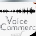 Voice commerce (Φωνητικό εμπόριο): Όλα για την ΕΥΚΟΛΙΑ του πελάτη - E-Marketing Clusters